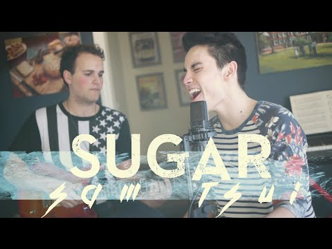 Sam Tsui & Jason Pitts Sugar (Maroon 5) Acoustic Cover